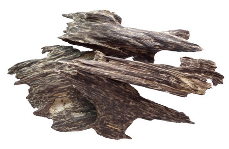agarwood group 2-low res